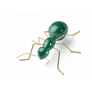 Mambo Unlimited Ideas Ant | Green