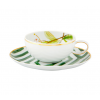 Teacup and Saucer Amazonia