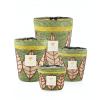 Baobab Collection geurkaars limited edition Ravina | Zee Zout - Amber - Vetiver